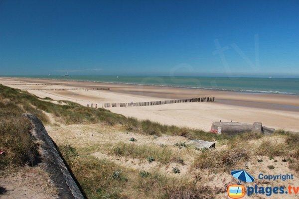 Wild beach in Blériot