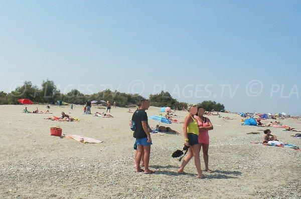 Environnement de la plage d'Elne 66