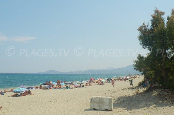 Spiaggia dei nudisti a Elne