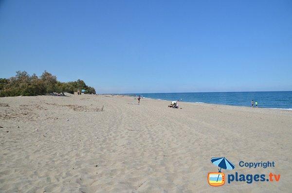 Photo de la plage du Bocal du Tech