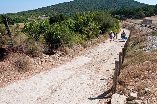 Sentier d'accès à la plage de Bodri