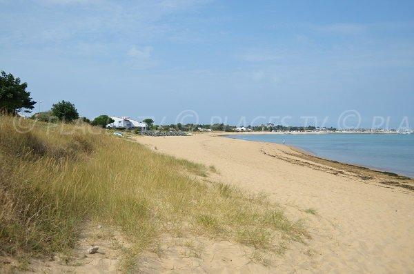 Plage sud de la Boirie sur l'ile d'Oléron