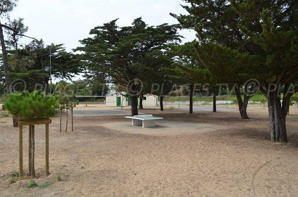 Beach volley et ping-pong sur la plage de la Boirie - Ile d'Oléron