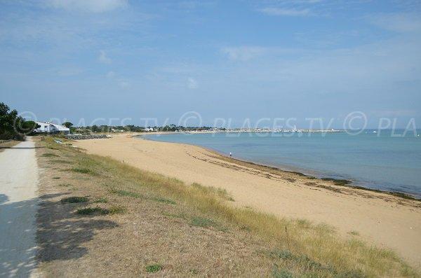 Photo de la plage de la Boirie à Saint Denis d'Oléron