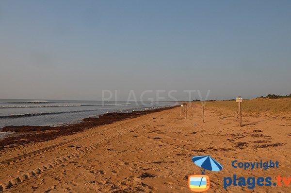 Photo de la plage du Bois Soret à Notre Dame de Monts