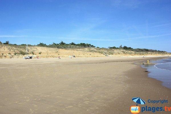 Falaises de la plage de Boisvinet - Jard sur Mer