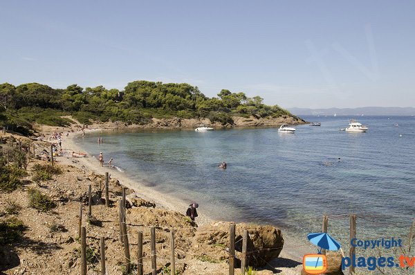 Photo de la plage de Bon Renaud à Porquerolles