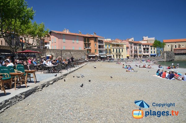 Cafes along Boramar beach - Collioure - Vermeille Coast