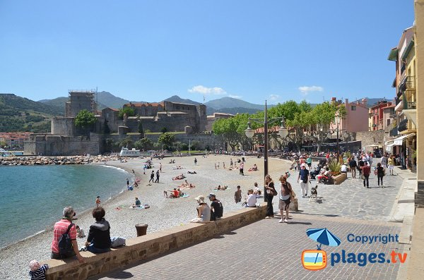 Boramar Beach in Collioure in France
