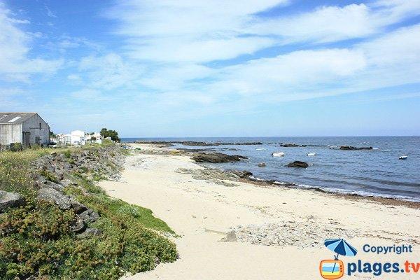 Plage de Borgne - Ile d'Yeu - pointe du Bouet