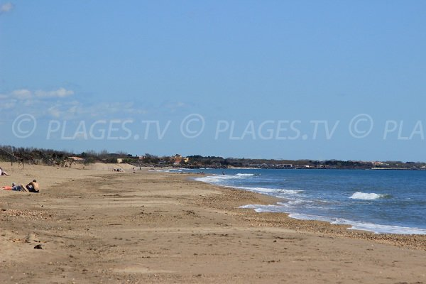 Photo of Bosquet beach in Portiragnes