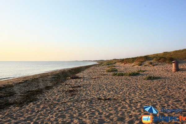 Photo de la plage des Boucholeurs à Noirmoutier - Vue vers le nord