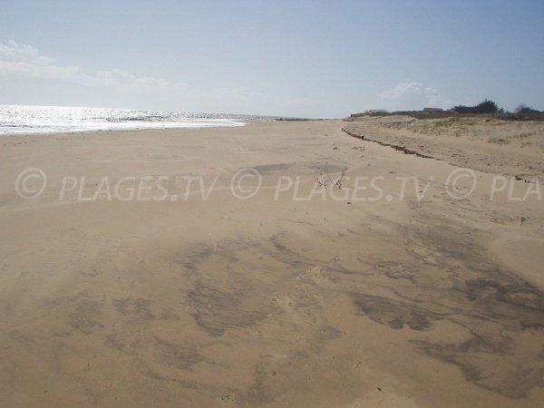 Plage des Bouchots en direction de La Tranche sur Mer