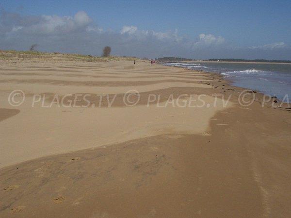 Plage de sable en direction de Belle Henriette à Grière-Plage