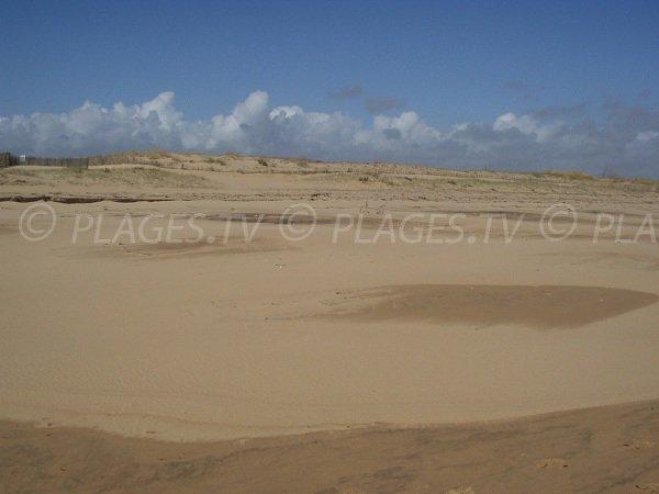 Dunes of Bouchots beach in La Tranche sur Mer