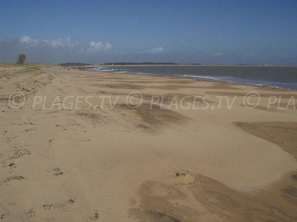Bouchots beach in La Tranche sur Mer in France