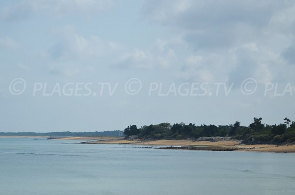 Plage sud de La Brée les Bains et St Georges d'Oléron - Ile d'Oléron
