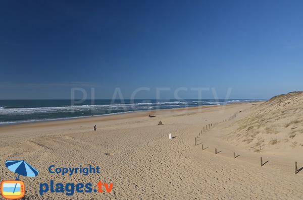 Photo de la plage des Bourdaines à Seignosse