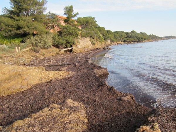 Plage du Bouvet sur la presqu'île de Giens