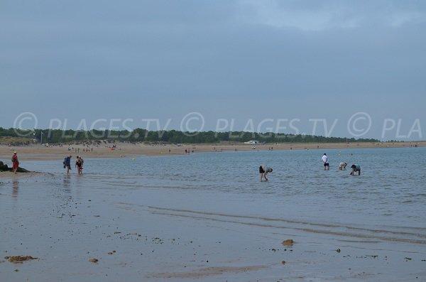 Fishing feet on the beach of Boyardville
