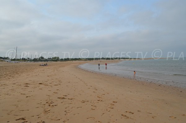 Beach along the forest of Saumonards in Oleron