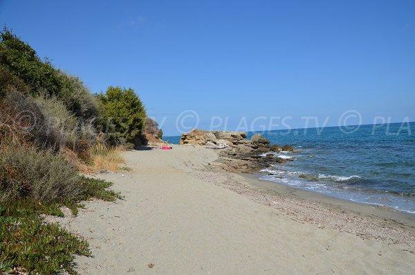 Photo of Bravone beach in Corsica