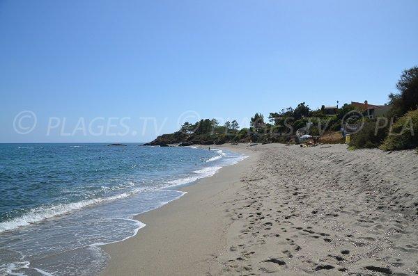 Beach near the marina of Bravone in Corsica