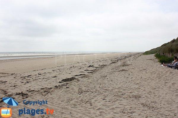 Plage sauvage - Utah Beach