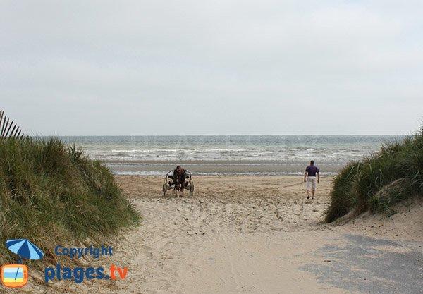 Chevaux sur la plage de la Brèche à Audouville la Hubert