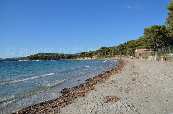 Photo of the Bregancon beach in Bormes les Mimosas