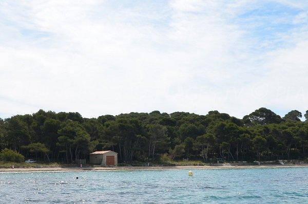 Brégançon beach in Bormes les Mimosas from the sea