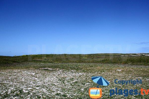 Environnement de l'anse de Brouennou à Landéda