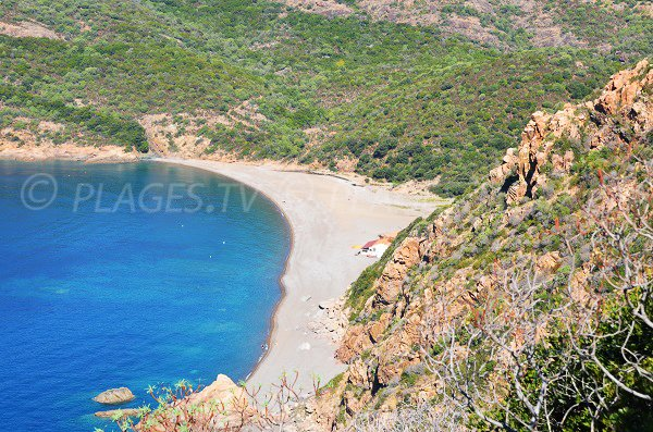 Spiaggia di Bussaglia in Corsica - Porto