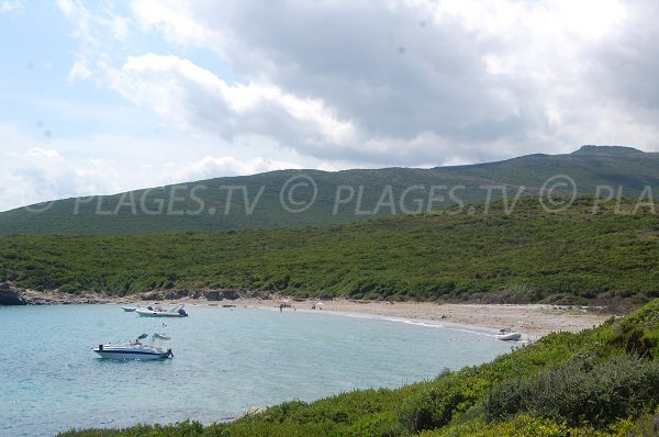Wild beach in Cap Corse - Cala Francese
