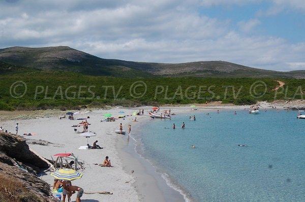 Belle plage sur le Cap Corse à Macinaggio - Cala Genovese