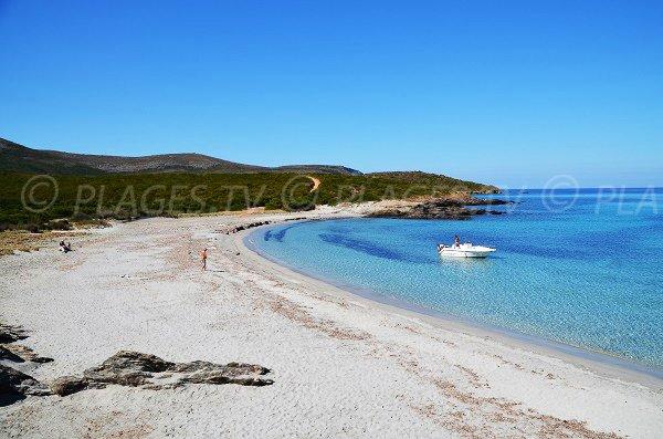 Plage de sable fin dans le Cap Corse - Cala Genovese