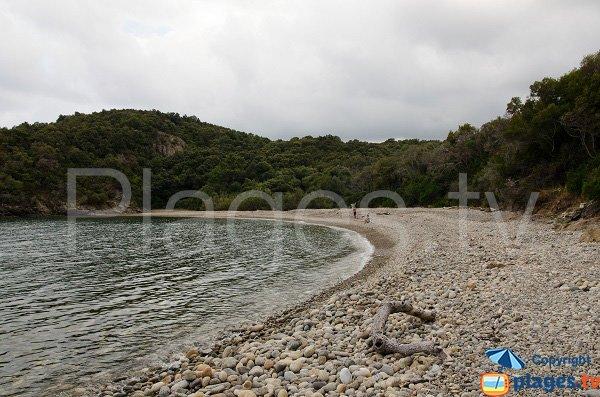 Photo de la plage dans le domaine de Cala d'Oro à Solenzara