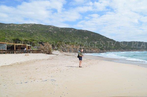 Sand beach in Coti Chiavari and view on Punta of Capo Nero