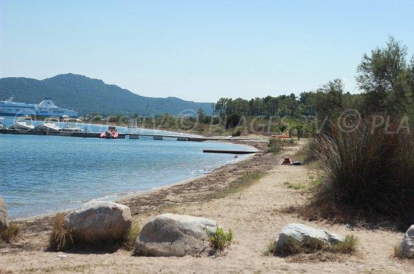 Nord de la plage de Cala Verde