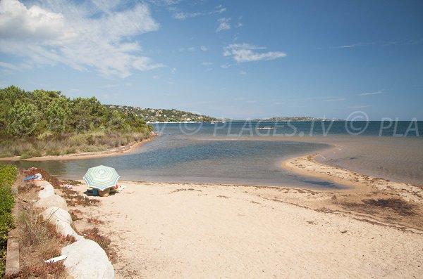 Cala verde beach and view on Cala Rossa domain - Corsica