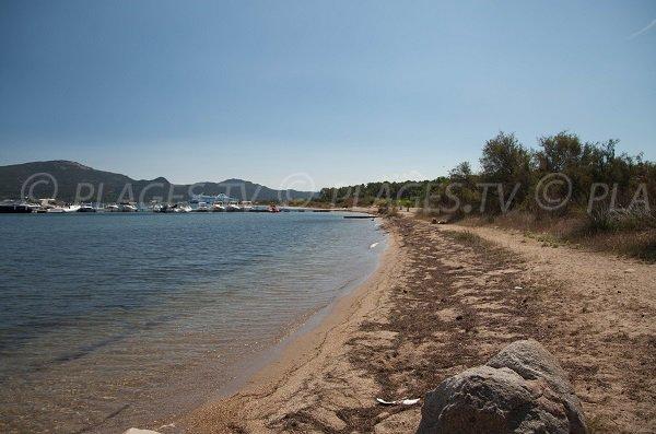 Photo of the Cala Verde beach in Porto-Vecchio in Corsica