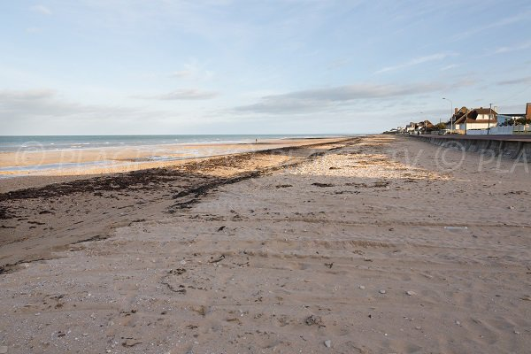 Photo of Caline beach in Bernières sur Mer