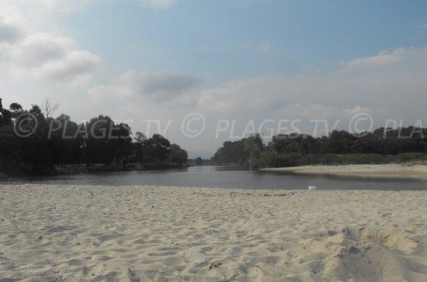 Etang autour de la plage de Calzarellu