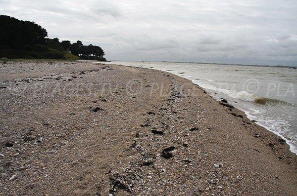 Cove of Camaret towards Halguen - Brittany