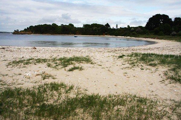 Photo of Camaret beach in Pénestin in France