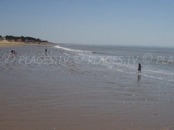 Plage de sable à La Tranche sur Mer des Camélias