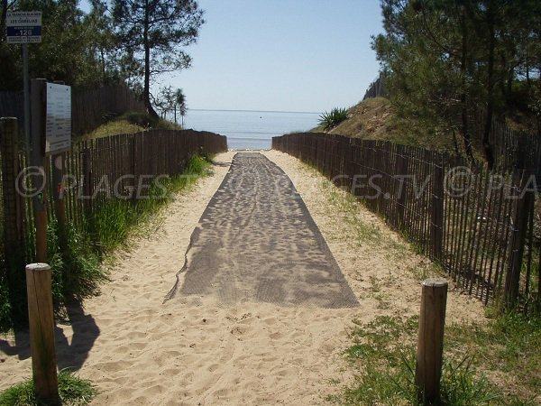 Access to Camélias beach in La Tranche sur Mer