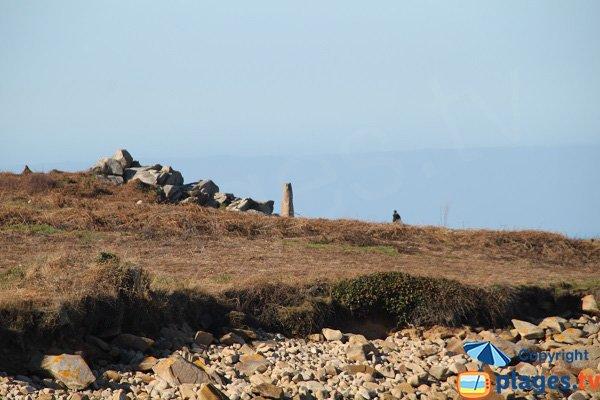 Menhir à la pointe de Primel - Plougasnou