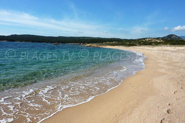 Spiaggia di Campo Mezzano - Corsica