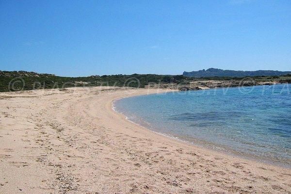 Photo de la plage de Campo Mezzano à Bonifacio